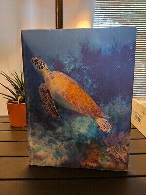KITTRICH 3D Motion Graphics Folder - Marine Life Turtle Holograph