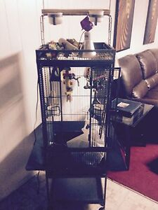 Large bird cage.lots of extras