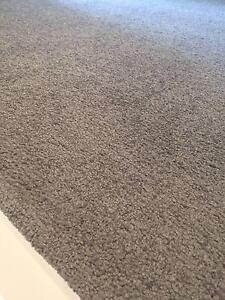 4.0m x 2.6m Medium Gray Carpet Northmead Parramatta Area Preview