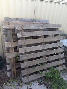 Free pallets x3 Bedford Bayswater Area Preview