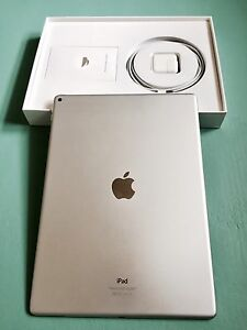 12.9' IPad Silver with Beetle Rugged case and screen protectors!