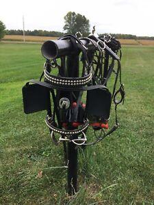 Single driving harness
