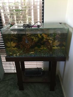FISH TANK WITH ACCESSORIES $140.00 ono