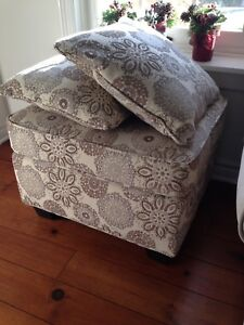 Ottoman and 2 Accent pillows