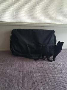 Massage table in excellent condition, cat not for sale