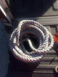 Norguard harness set