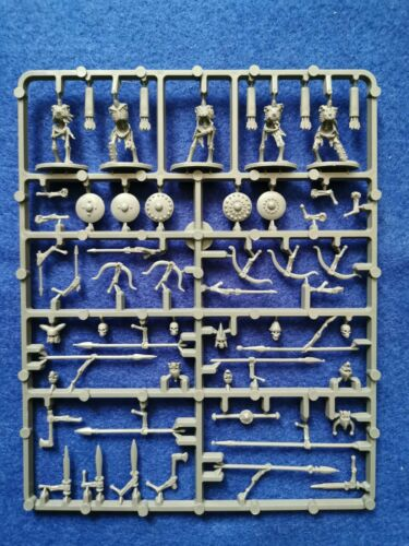 как выглядит Oathmark Skeleton Infantry sprue фото