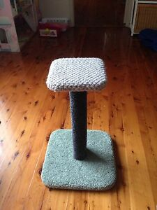 Cat scratching post Cardiff Lake Macquarie Area Preview