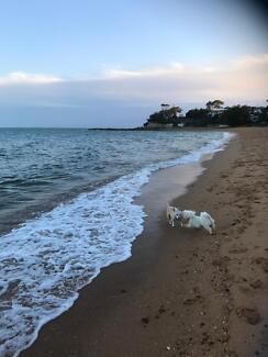 Room for rent to share house at Margate- female only