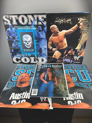 WWE WWF RARE 1998 Titan FOLDERS STONE COLD holographic Dark Side of The Ring
