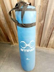 Sting Punching Bag