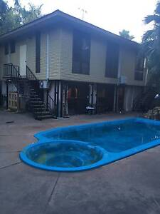 Room for Rent in Spacious and Elevated 4-Bedroom House in Leanyer Leanyer Darwin City Preview