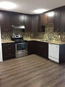 Renovated and spacious House rental in Sherwood Park.