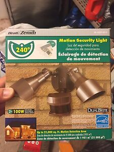 Motion detection security light