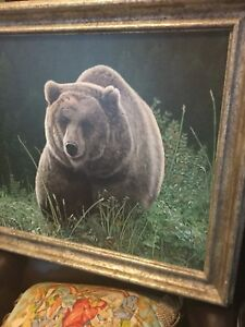 Charles Frace Grizzly Framed Limited Edition Canvas