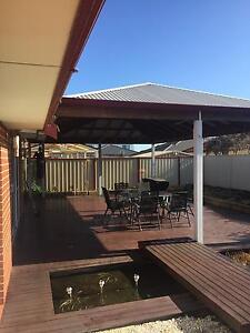 Housemate needed ASAP. Canningvale Canning Vale Canning Area Preview