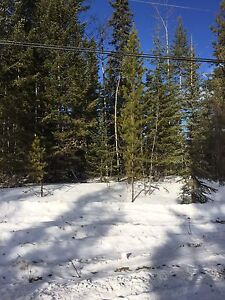 1/2 acre for sale at Deka Lake