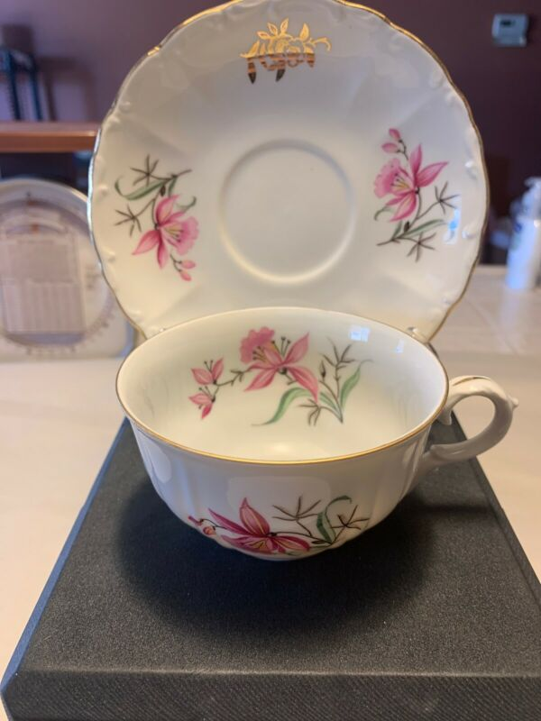 Vintage Bohemian tea cup And Saucer Lt141