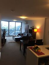 I'm looking for share mate A Luxury and Beautiful Aparment Southbank Melbourne City Preview