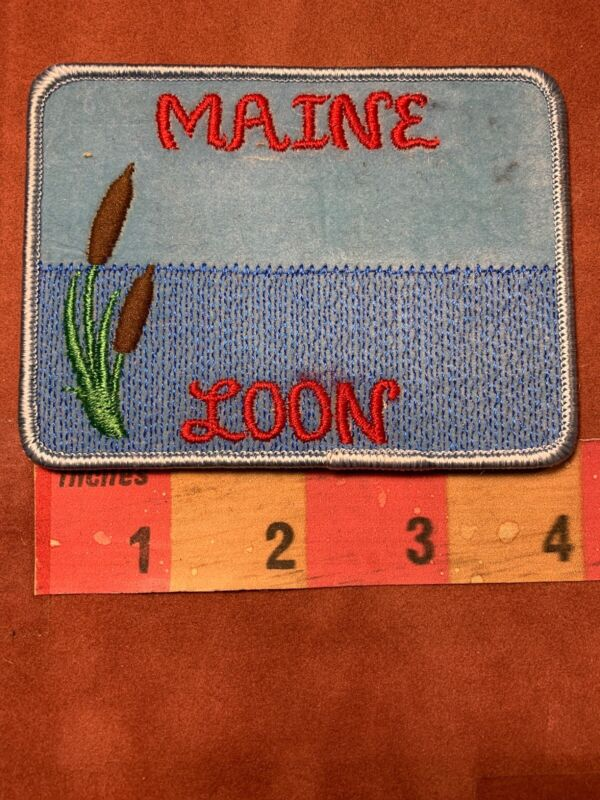 Cattail Patch MAINE LOON ~ As-Is IT