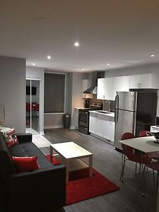 Stunning Renovated Furnished 3 Bedroom in Centretown