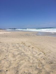 Room for rent from 16 Jan to 6 Feb beachside Byron Bay Byron Bay Byron Area Preview