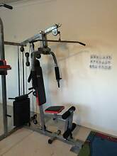 Home Gym - Healthstream HS300G in mint condition Fulham West Torrens Area Preview