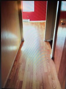 RENT-New Large 3 bedroom near HSC