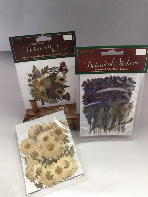 Dried & Pressed Flowers  for resin Arts Crafts Jewelry Making: 3 Packages