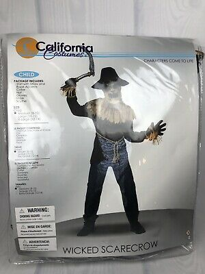 Kids Scarecrow Costumes (Kids Wicked Scarecrow Halloween Costume, Sz Medium (8/10), California)