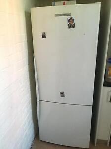 Fisher & paykal fridge freezer Belmore Canterbury Area Preview