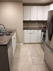 BEAUTIFUL BASEMENT SUITE UTILITIES INCLUDED AND PET FRIENDLY