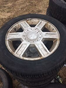 16 in all season tires