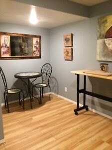 FULLY FURNISHED BASEMENT SUITE-All utilities inc