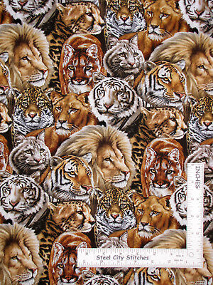 Lion Tiger Jungle Animals Cotton Fabric Elizabeths Studio Big Cats By The Yard