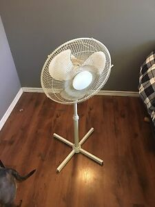 Freestanding fan