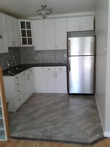 Completely Renovated 3B Apartments in Canboro and Balfour!