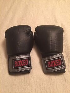 Boxeo Boxing Gloves