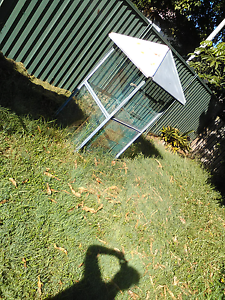 Bird Cage LARGE Margate Redcliffe Area Preview