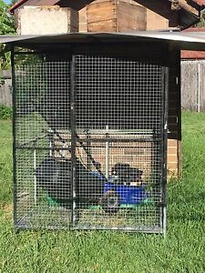 Cage for animals and birds Westmead Parramatta Area Preview