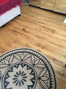 European Oak Timber Flooring Engineered Planks WHOLESALE CHEAP Clemton Park Canterbury Area Preview