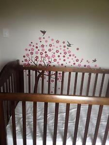 Giveaway Kingparrot cot Townsville Townsville City Preview
