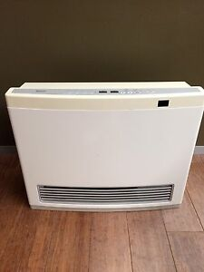 Rinnai Avenger 25 Natural Gas Heater Botany Botany Bay Area Preview