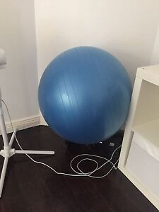 Large Exercise Ball Rose Bay Eastern Suburbs Preview