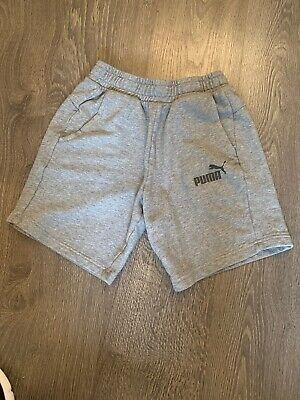 Puma Jersey Shorts Grey XS