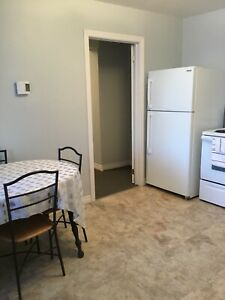 Cozy one bedroom plus den basement apartment for rent