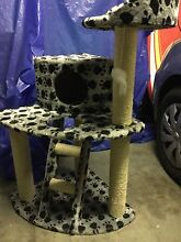 Cat scratching post tree play gym 3 levels Clovelly Eastern Suburbs Preview