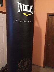 Everlast punching bag with boxing and UFC gloves