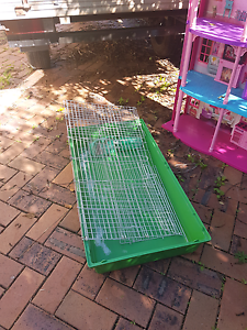 Free guinea pig cage Caboolture Caboolture Area Preview