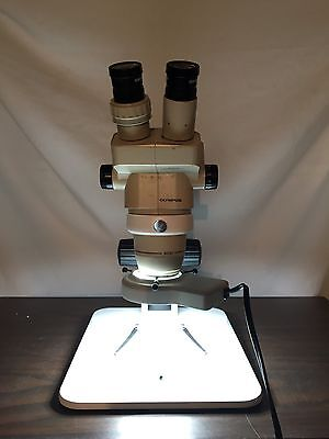 Olympus Sz30 Microscope With New Stand And Light